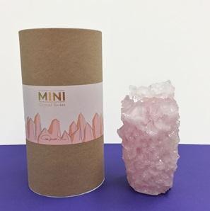 Crystal vase Blush