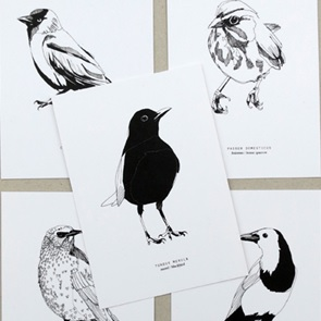 5 Dutch birds postcards
