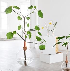 Glasilium vase 38 cm
