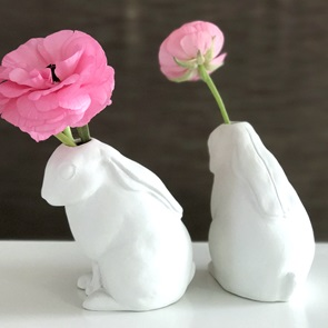 Rabbit vase dreaming