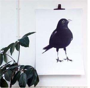 Blackbird poster A1