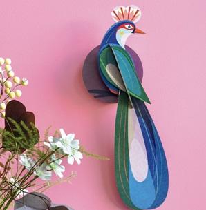 Paradijsvogel Banda*