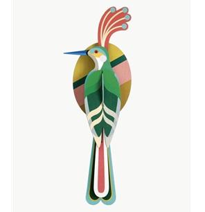 Paradijsvogel Nias*