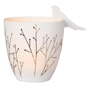 Poetry light birds