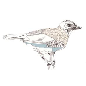 Jay-bird poster A4