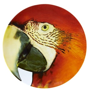 Red Macaw Bird Plate