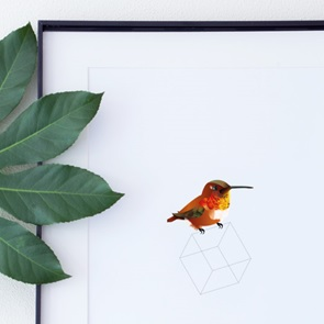 Rufous Poster A3