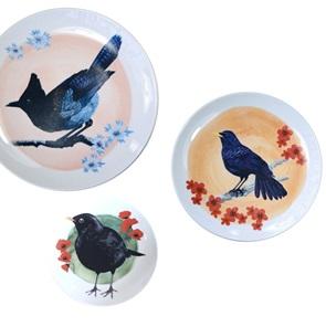 Blue flute thrush bird plate