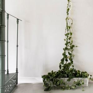 Messing ketting voor planten*
