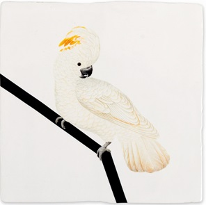 Storytiles White Cockatoo