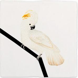 Storytiles Witte Kaketoe*