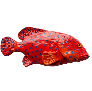 Coral Grouper wall object