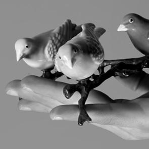 Witte vogel op tak