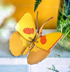 Yellow Butterfly*