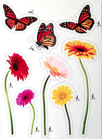Margrieten en vlinders