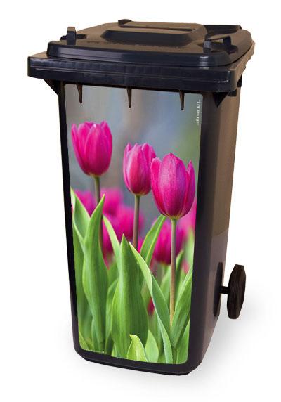 Spring Tulpen