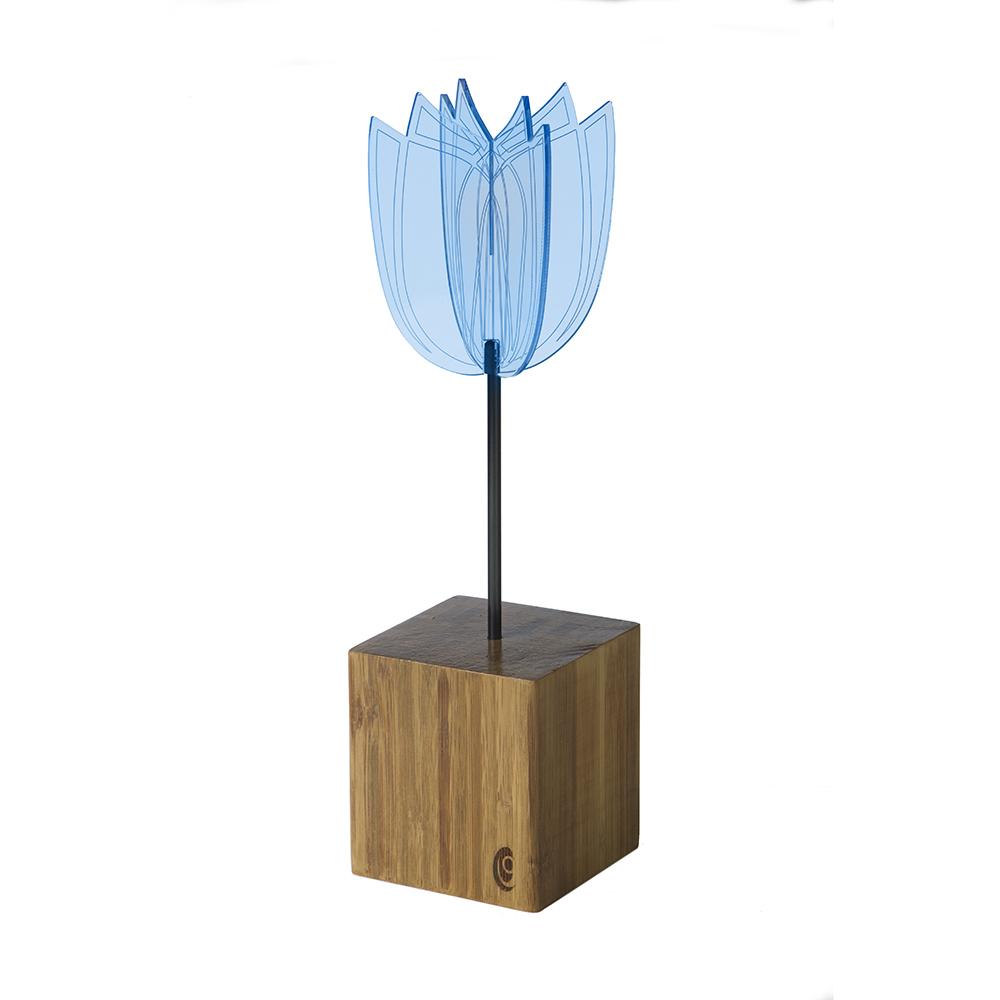 https://myshop.s3-external-3.amazonaws.com/shop2736700.pictures.Soldisk-sokkel-blauw-400018.jpg