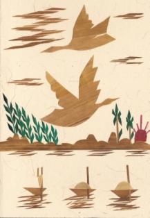 Twee vogels boven de rivier