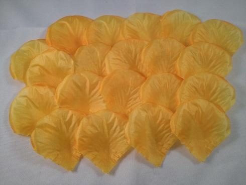 Donkergeel/oranje (5x5 cm)