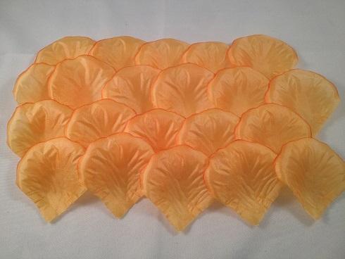 Oranje (5x5 cm)