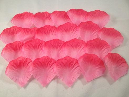 Roze met donkerroze rand (5x5 cm)
