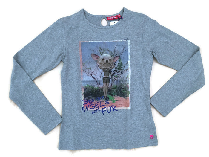 https://myshop.s3-external-3.amazonaws.com/shop3044400.pictures.Someone-longsleeve-dogs-are-angels-grey-melange.jpg