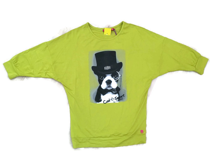 https://myshop.s3-external-3.amazonaws.com/shop3044400.pictures.Someone-shirt-34-dog-cool-smart-medium-lime.jpg