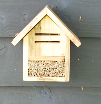 Insectenhotel lieveheersbeestjes & bijen