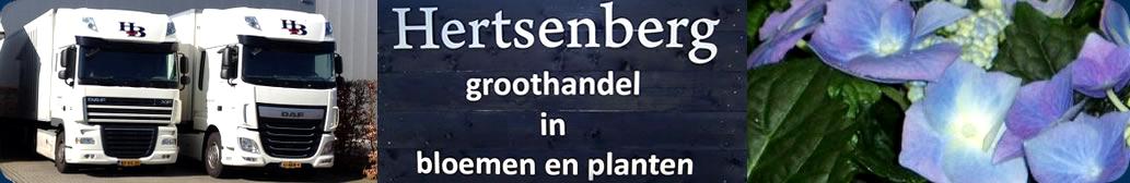 Hertsenberg Groothandel BV