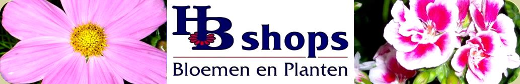 HB shops BV