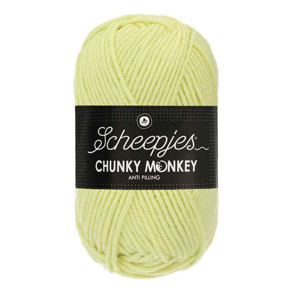 Scheepjes Chunky Monkey 100g - 1020 Mint