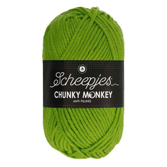 Scheepjes Chunky Monkey 100g - 2016 Fern