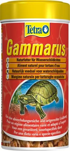 TETRA GAMMARUS SCHILDPAD 100 ML.