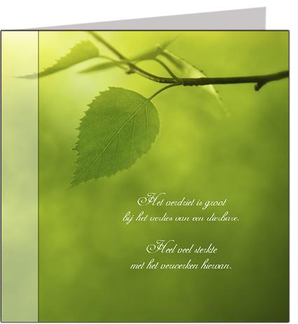 Condoleancekaart quote