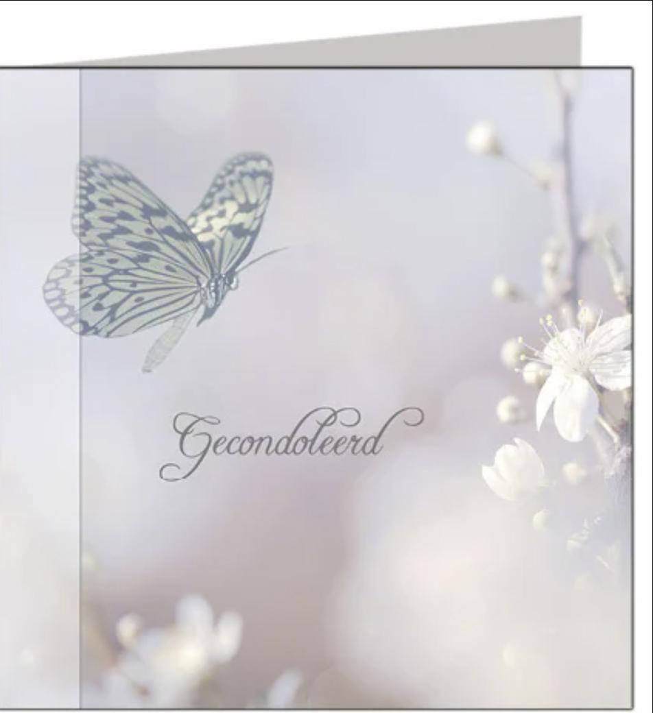 Condoleancekaart Gecondoleerd