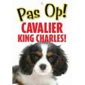 PG waakbord pas op Cavalier King Charles