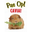 PG waakbord pas op Cavia