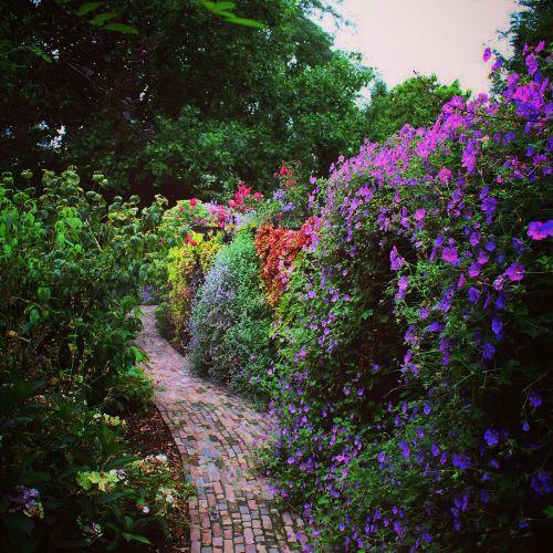 5 - De verticale groene wand is 70 meter lang en slingert mooi door de tuinen heen.