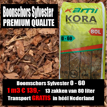 Boomschors Sylvestre 40-60mm