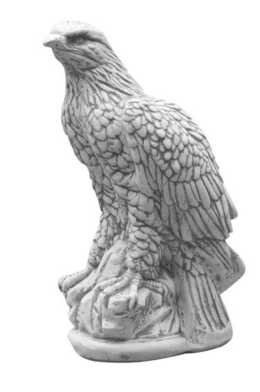 Beeld van adelaar