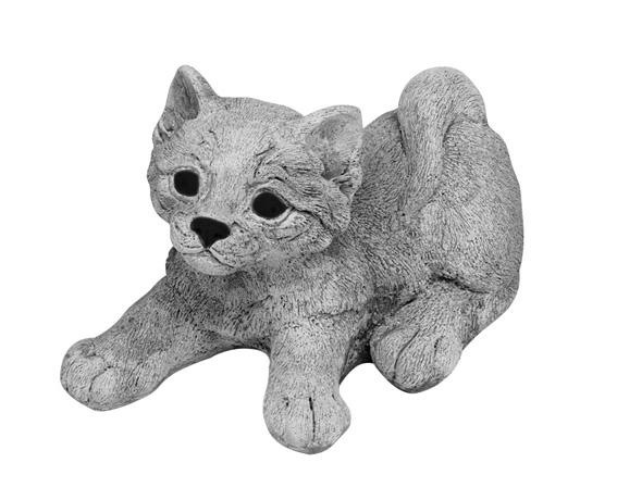 Beeld van een kat