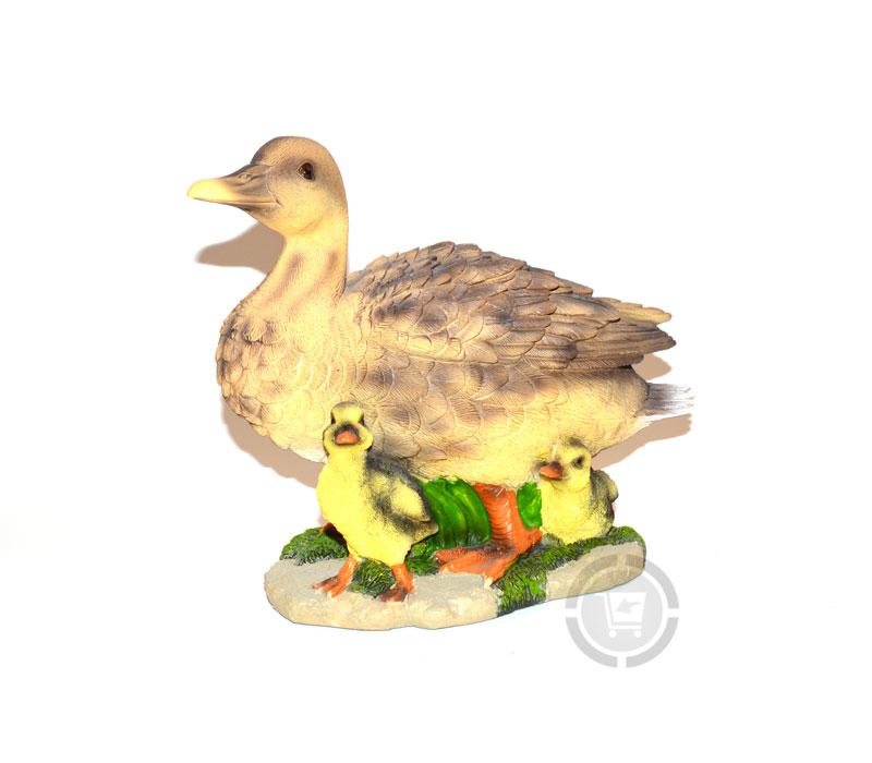 Beeld eend met kuikens