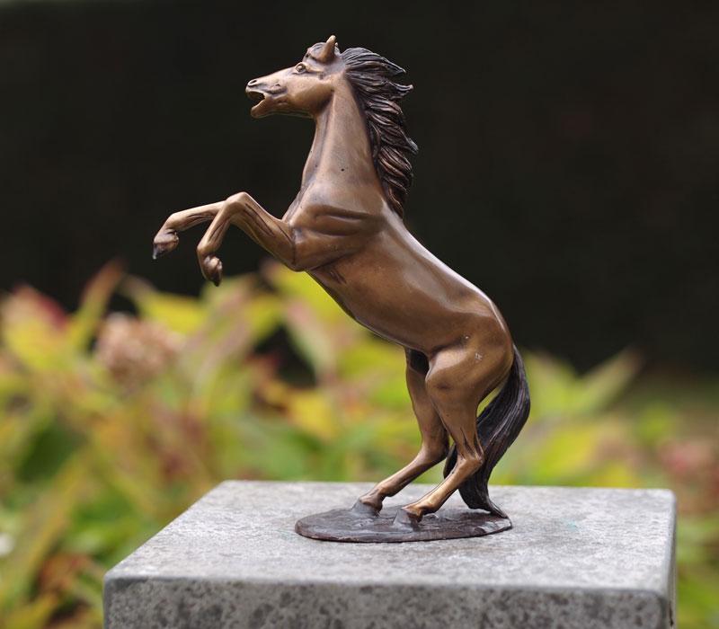 Bronzen beeld steigerend paard