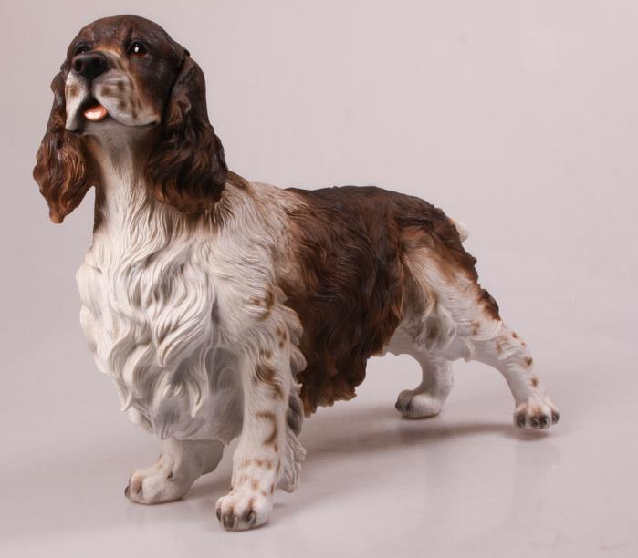 Beeld Cocker Spaniel