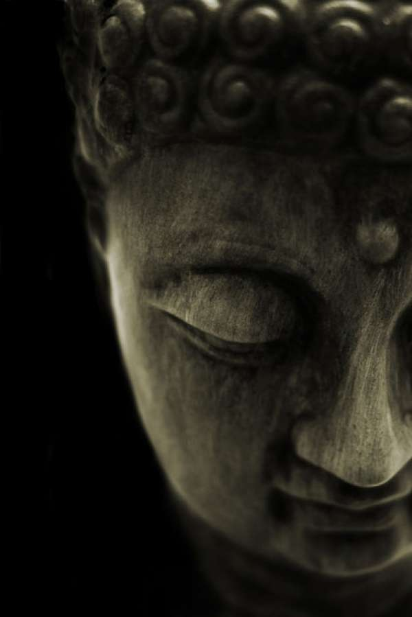 webshop voor de nieuwste boeddhabeelden canvas boeddha