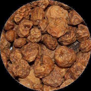 Tijgernoten 8-20 mm