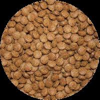 Boden Tabletten