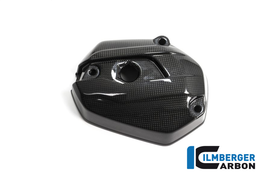Ilmberger Injection Cover left Side Carbon KIT X 2 BMW R 1250 GS