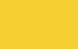 Blik 0,5 ltr BICCS industrielak RALkleur
