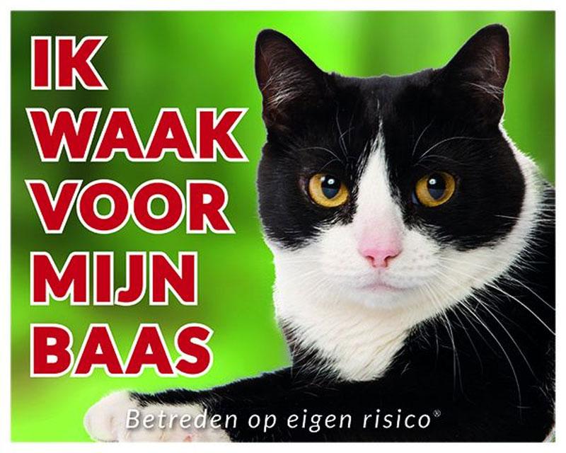 Kat-Zwartwit-194.jpg